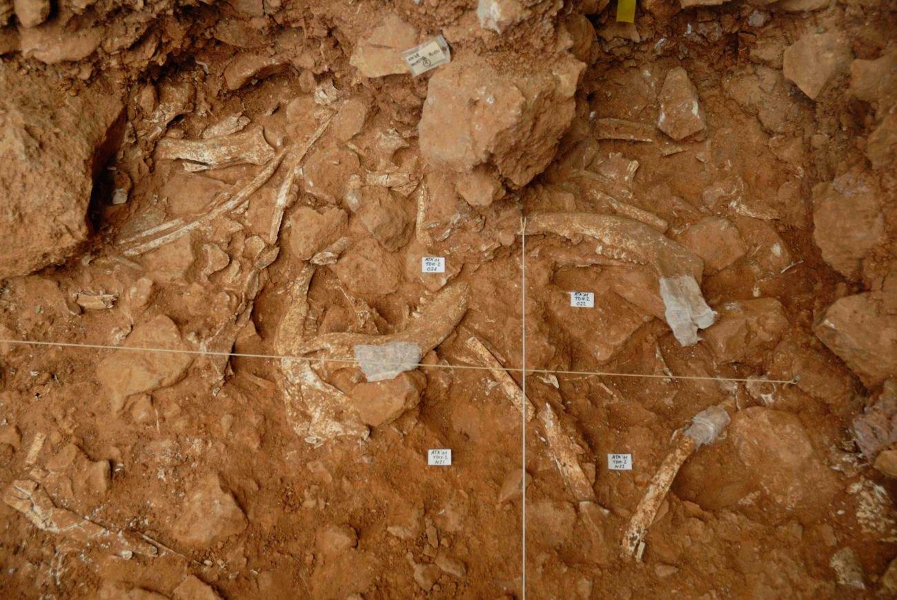 dolina1. Sitio arqueológico de Atapuerca