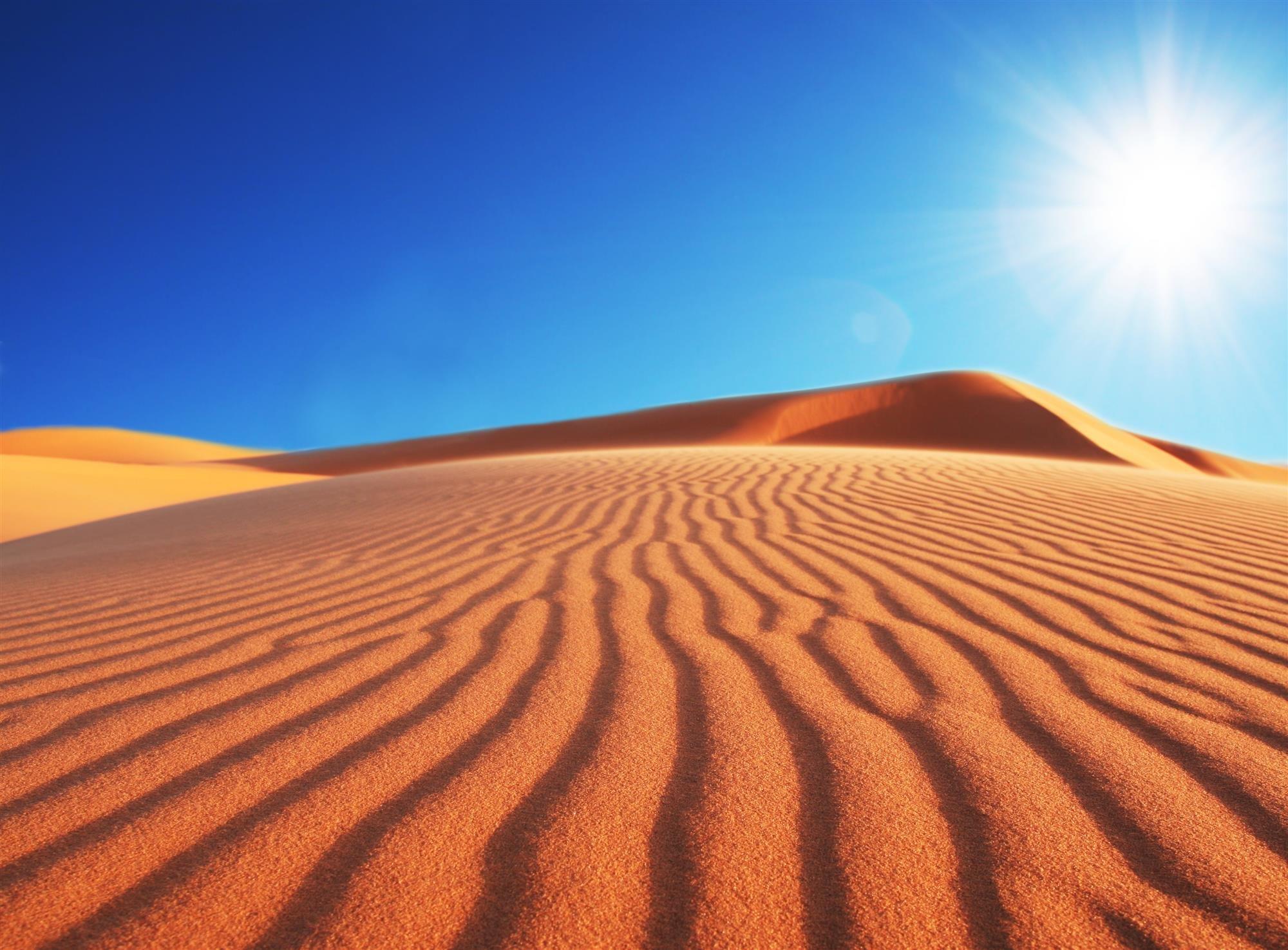 """Desde el Sahara hasta Sierra Nevada.  """"El cielo protector"""", Paul Bowles"""