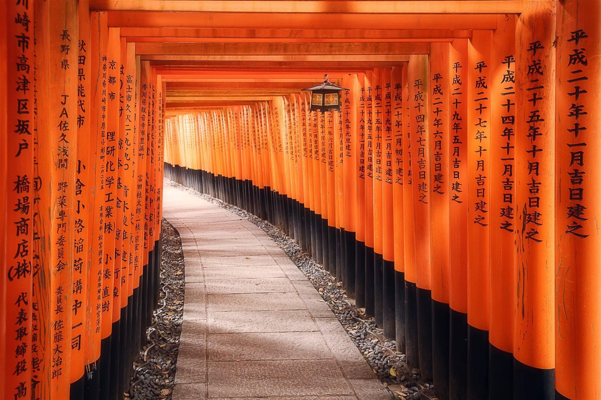 Toris bermellón, Santuario de Fushimi Inari, en Tokoi