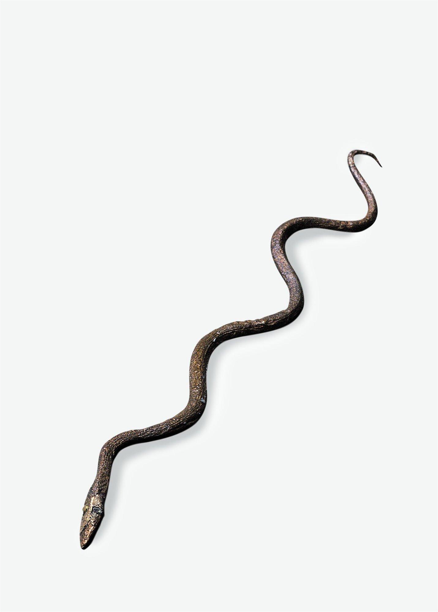 04 serpiente bronce animal amuleto sanador. Amuleto sanador