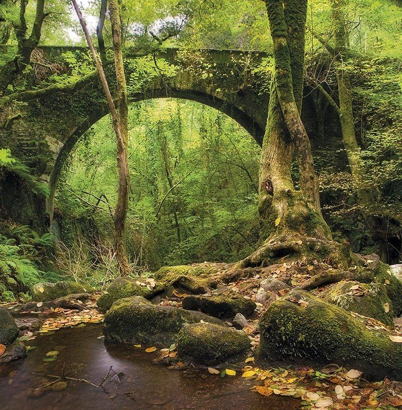 Galicia - Puente rio Sesin. El puente que cruza el río Sesín, en las cercanías de Caaveiro.