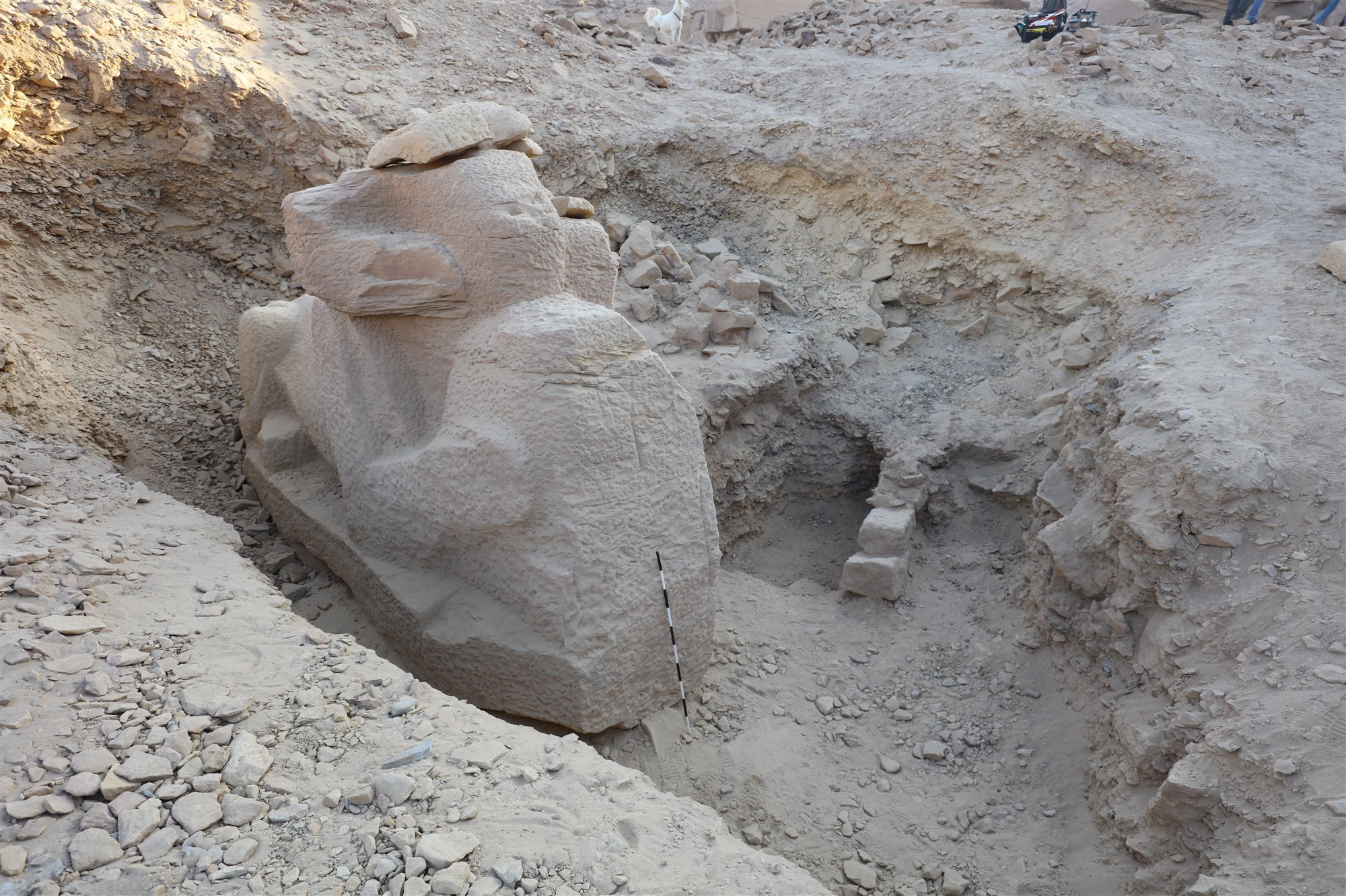 gebelelsilsila3. Crioesfinge inacabada del reinado de Amenofis III