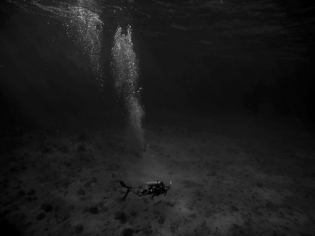 Diver light / Luz de buzo (Foto: Laura O'Flynn / Sony World Photography Awards 2019)