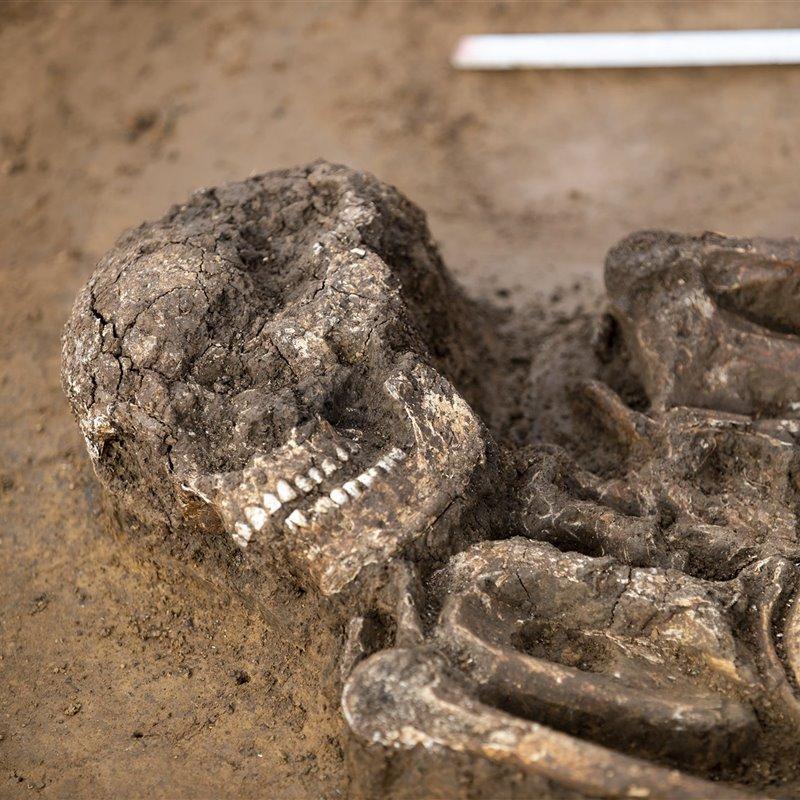 Reportajes y fotografías de Neolítico en National Geographic