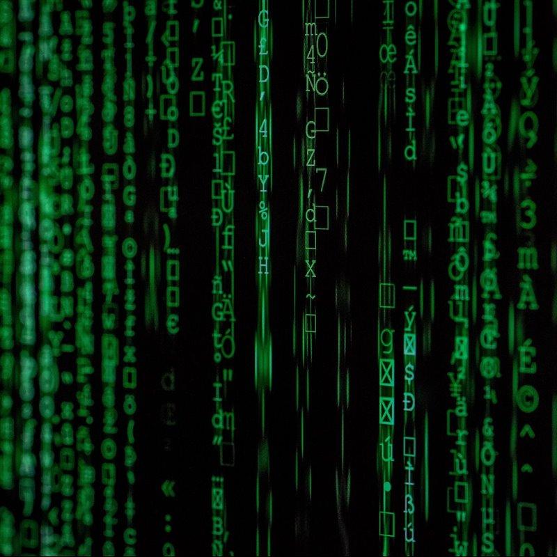 Internet, una red de miles de cables submarinos