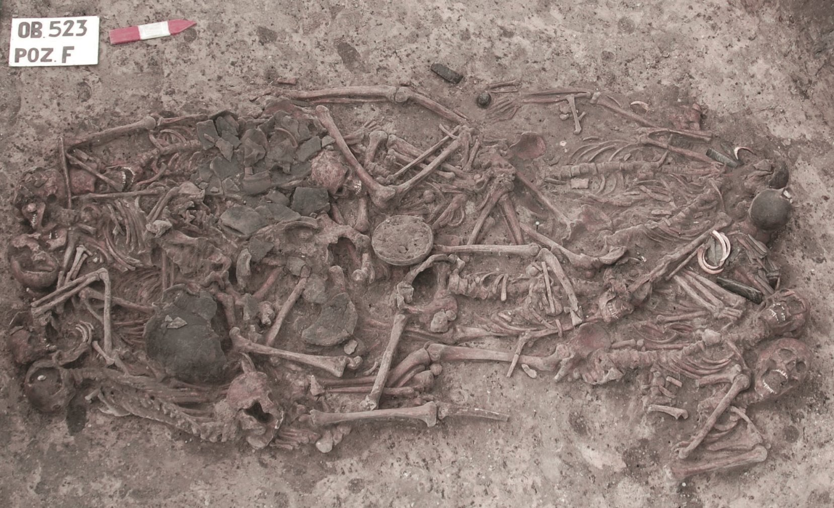 [Imagen: huesos-de-hace-mas-de-5000-anos_bc2fe10c_1657x1009.jpg]