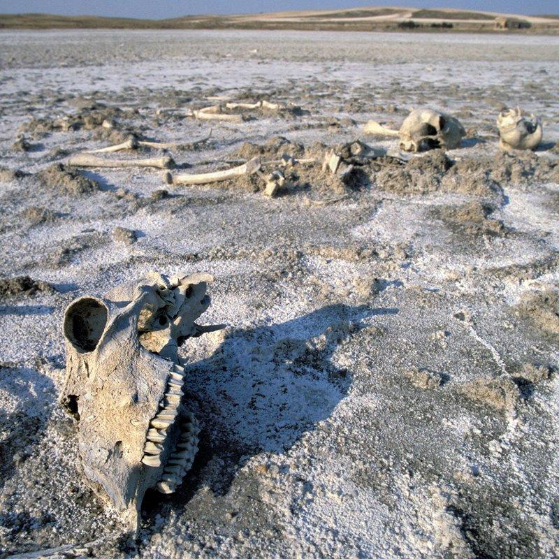 El desierto que avanza en España