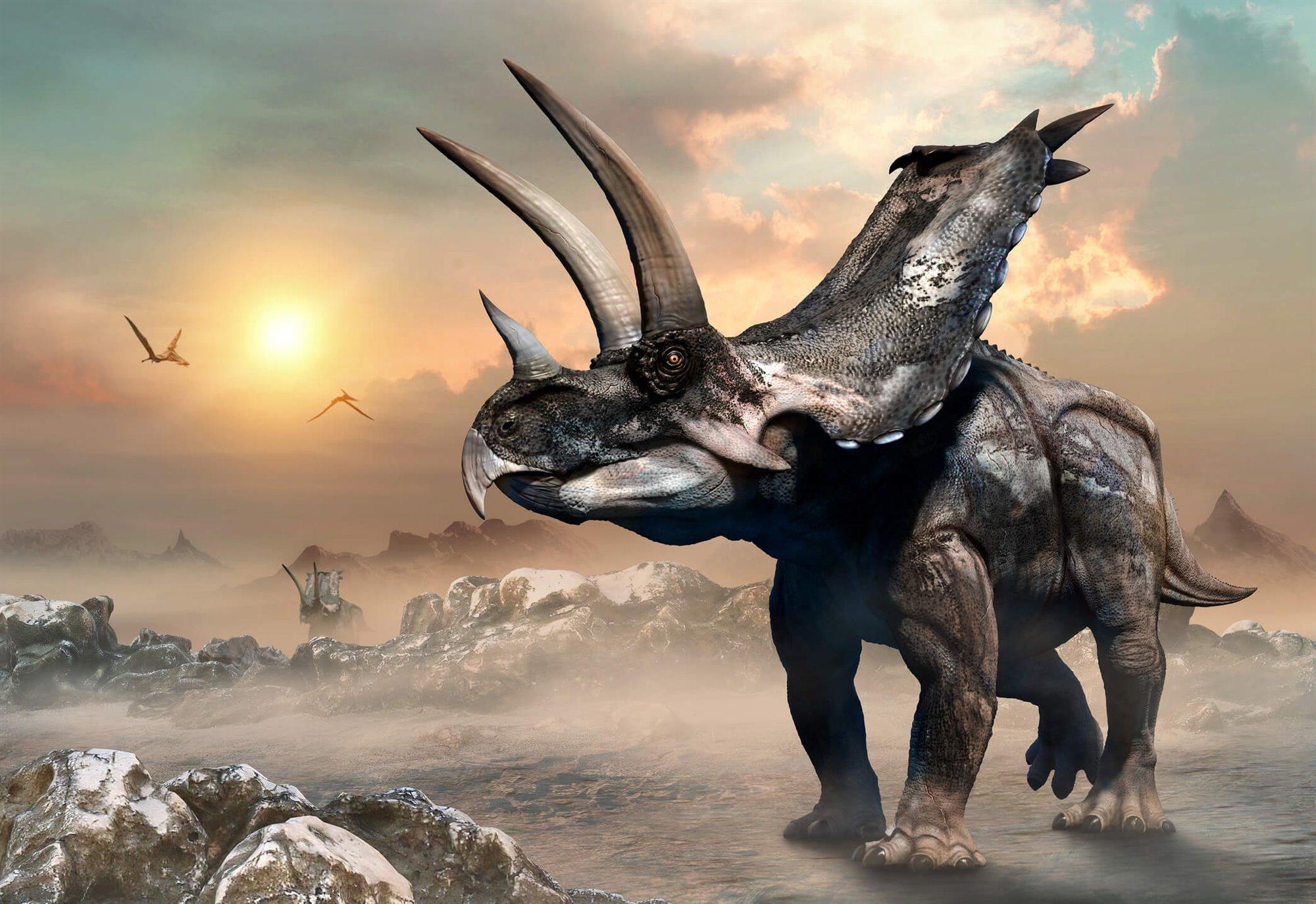 Reconoces A Estos Dinosaurios Primal, turok remastered, jurassic survival, beasts of bermuda y muchos más juegos para pc. reconoces a estos dinosaurios