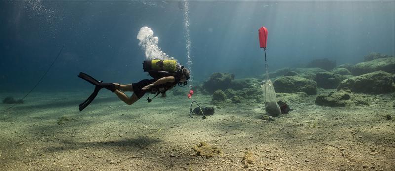 Las costas griegas esconden cientos de pecios hundidos en sus profundidades.