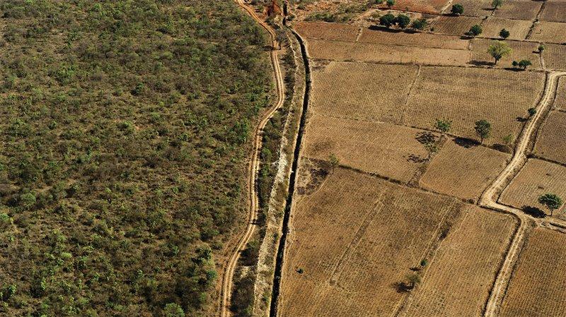 Krithi Karanth es consciente de cómo en su país, la India, el uso de la tierra acota cada vez más el hábitat de las especies, como evidencia esta imagen aérea, donde los cultivos colindan con un parque nacional.
