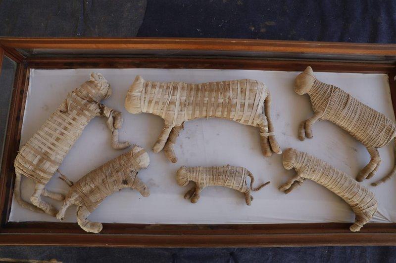 También se han localizado una veintena de momias de gatos en el interior de cajas de madera.