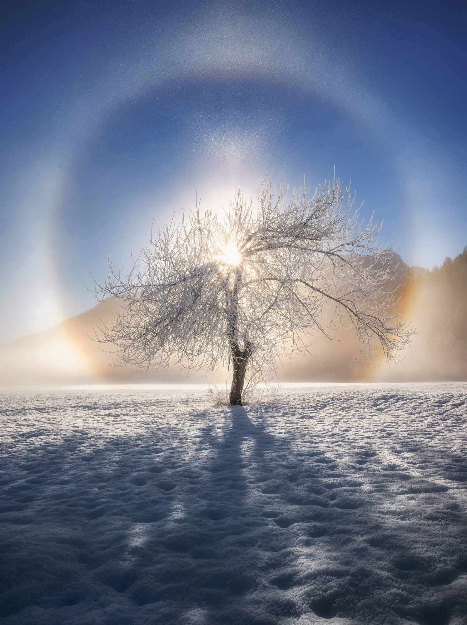 Ring of frost