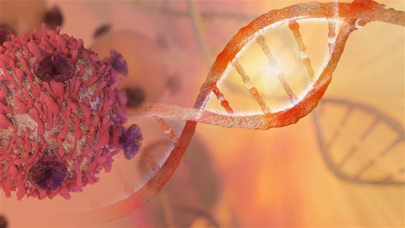 Inmunoterapia, la revolución contra el cáncer