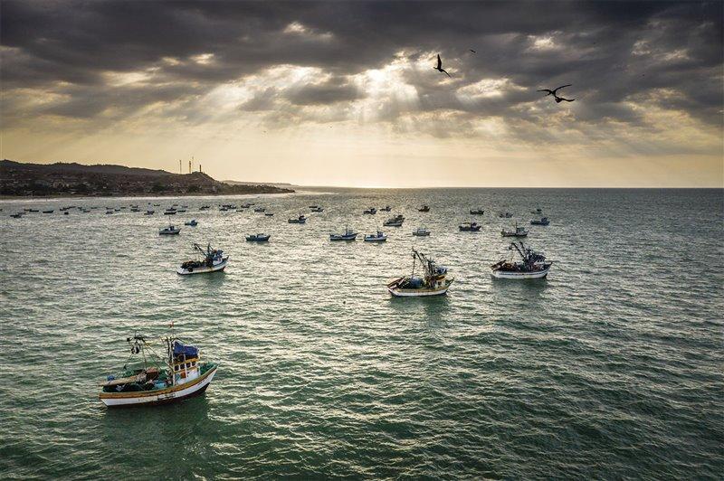 Cada mañana, los pescadores de la costa norte de Perú se embarcan en busca de un sustento cada vez más difícil de conseguir. Uno de los pilares del proyecto de Forsberg es brindarles fuentes de ingresos alternativas a través del ecoturismo.