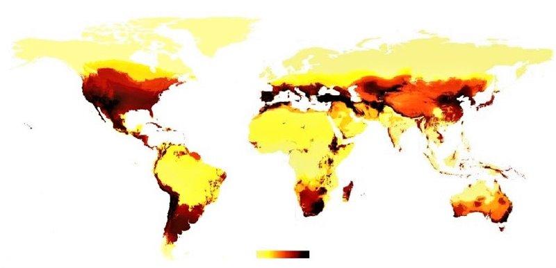 Mapa de la distribución global de la biodiversidad de abejas en el mundo