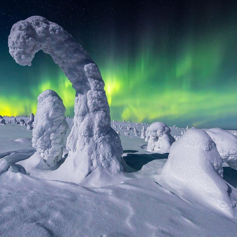 Las mejores fotos de auroras boreales de 2020