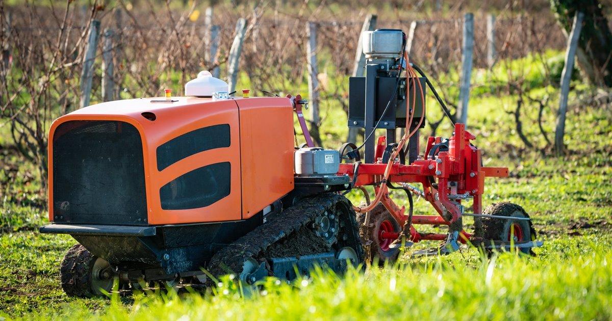 Robot-welaser-vehiculo-con-sistemas-de-discriminacion-de-malas-hierbas-en-cultivos_b375dd34_1200x630