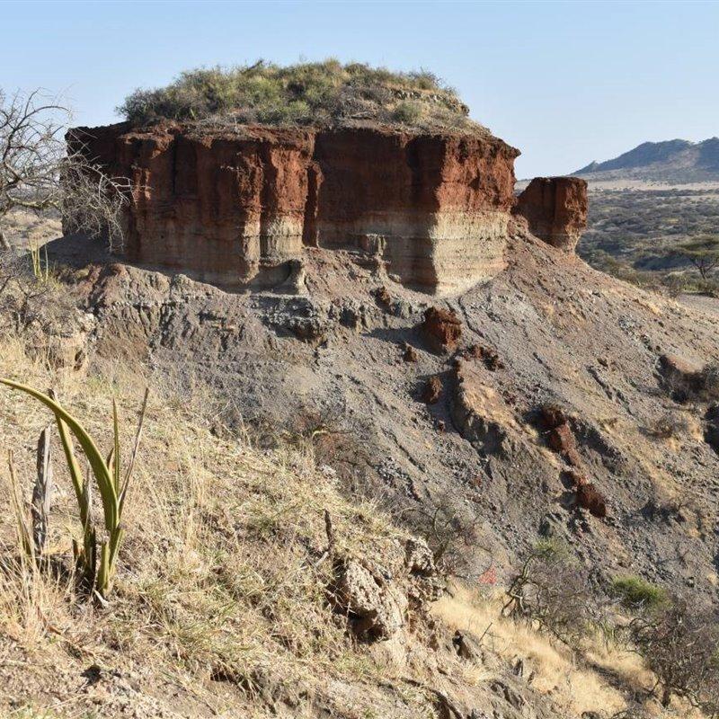 Un yacimiento en Tanzania revela la explotación de ecosistemas hace 2 millones de años