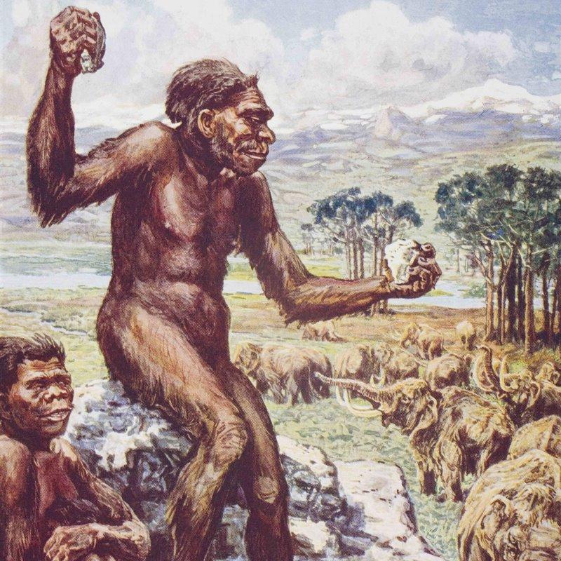Tu increíble dedo pulgar: 2 millones de años de evolución