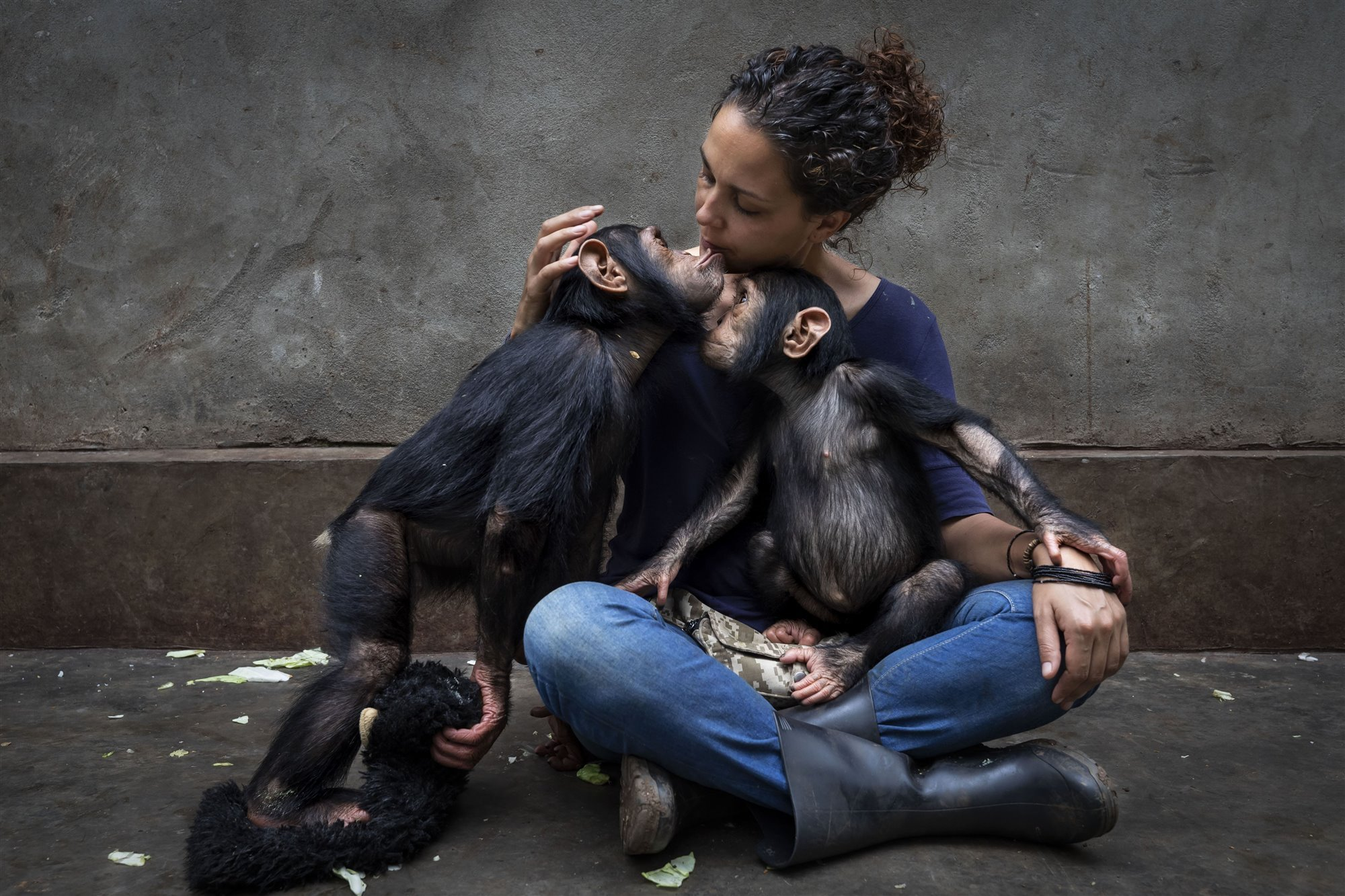Saving Chimps in the Congo I